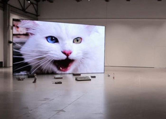 No poem loves its poet, 2020, modular LED screen, found objects, video installation