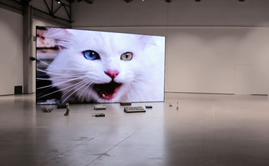 No poem loves its poet, 2020, modularer LED-Bildschirm, gefundene Objekte, Videoinstallation