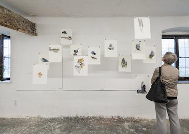 Open Studios, Class of Jakob Kolding 2019, photo: Mira Turba